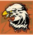graphic head of a bald eagle mascot vector image