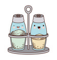 salt and pepper containers colorful kawaii vector image vector image