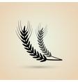 Wheat icon grain design Agriculture concept vector image vector image