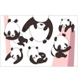 Cartoon panda bear set vector image vector image