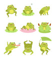 cute frogs lotus flowers and funny cartoon vector image vector image