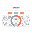 dentistry vector image