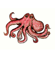 graphic artistic stylized image of octopus vector image