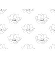 indian lotus seamless on white background vector image vector image