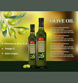 olive oil products ad 3d vector image vector image