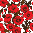 seamless pattern with field poppies vector image