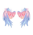 delicate angel wings vector image vector image