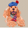 dog American Cocker Spaniel in Scottish Ta vector image vector image