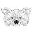 entangle raccoon head doodle hand drawn vector image vector image