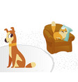 ginger color cat and dog characters flat cartoon vector image vector image