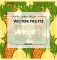 organic farm fruit square banner vector image vector image