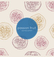 passion fruit seamless pattertn vector image vector image