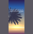 summer tropical background palm tree on sunset vector image vector image