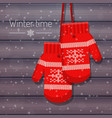 winter knitted mittens on vector image