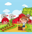 a farmer harvest vetgetable vector image
