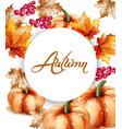 autumn fall vegetables watercolor pumpkin vector image vector image
