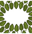 background of hop vector image vector image