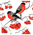 Bullfinch and rowan seamless pattern