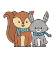 cute squirrel and rabbit with scarf autumn vector image