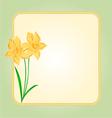 Daffodil Spring flower background frame vector image