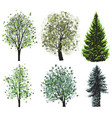 deciduous and coniferous green trees set vector image vector image