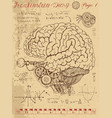 frankentsein diary with mechanical human brain vector image vector image