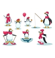 Penguins in different situations vector image