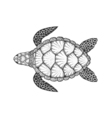 Sea turtle in line art style Hand drawn Design vector image vector image