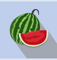watermelons and slices isolated vector image