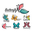 beauty and fashion butterfly corporate identity vector image