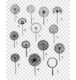 Dandelions collection sketch fro your design vector image vector image
