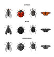 design of insect and fly sign collection vector image