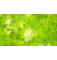 Emerald Forest Abstract Background vector image vector image