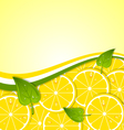 Lemon slices template vector image vector image