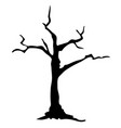 silhouette dead tree without leaves on white vector image