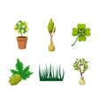 plant icon set cartoon style vector image