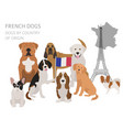 Dogs by country of origin french dog breeds