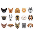 dogs cartoon heads face emoticons set vector image
