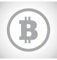 Grey bitcoin sign icon vector image vector image