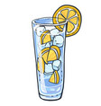 lemonade glass with slice of lemons and ice cubes vector image