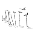 seagull standing vector image vector image