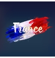 French national flag Euro 2016 vector image