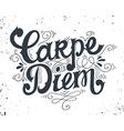 Carpe diem Quote Hand drawn vintage print with vector image vector image