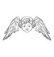 cherub cute winged curly smiling baby boy angel