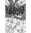 elderflower - flower black and white vector image vector image