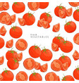 fresh tomatoes background vector image vector image