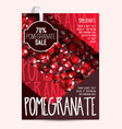 pomegranate seeds brochure design template fresh vector image