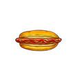 sketch hot dog with frankfurter sausage vector image