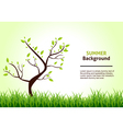 summer landscape tree on a background green vector image vector image
