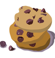 Chocolate cookies vector image